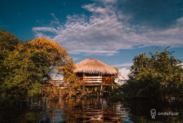 Juma Amazon Lodge: hotel de selva na Amazônia